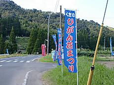 Kukino1