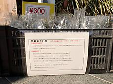 Takesumi_002