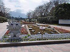 Hanakagosima002