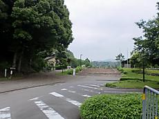 Guribu001