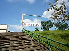 Kaguyag001