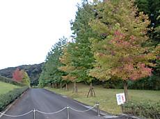 Hiroba004