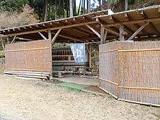 Asiyu001